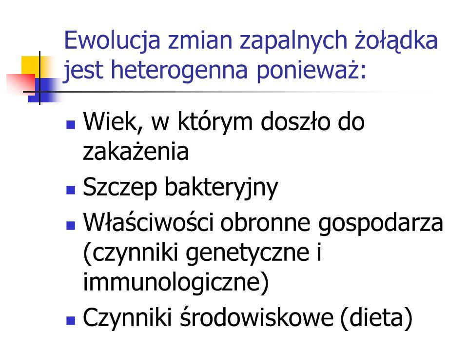 Ewolucja zmian zapalnych żołądka jest heterogenna ponieważ: Wiek, w którym doszło do zakażenia Szczep bakteryjny Właściwości obronne gospodarza (czynn