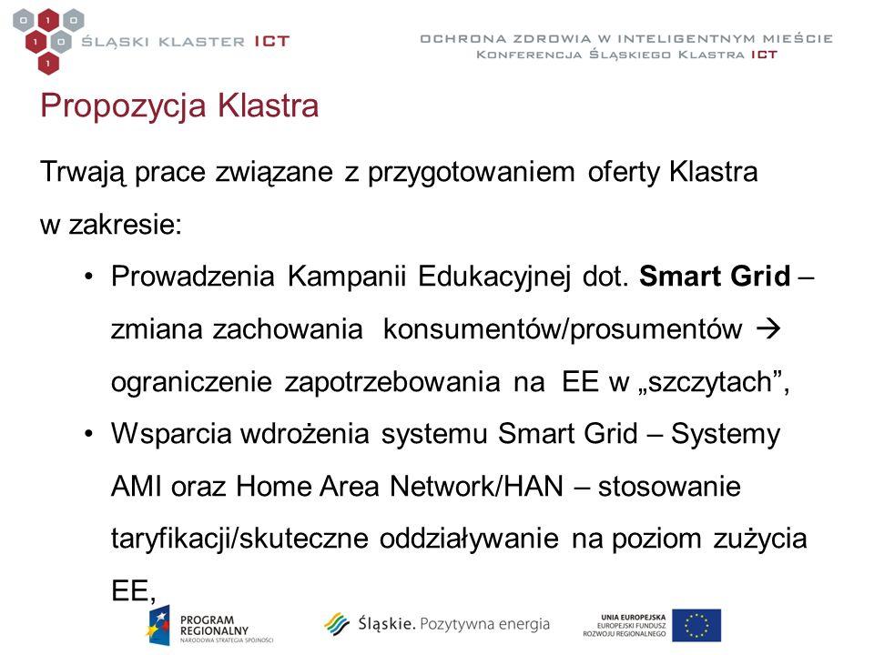 Propozycja Klastra Trwają prace związane z przygotowaniem oferty Klastra w zakresie: Prowadzenia Kampanii Edukacyjnej dot. Smart Grid – zmiana zachowa