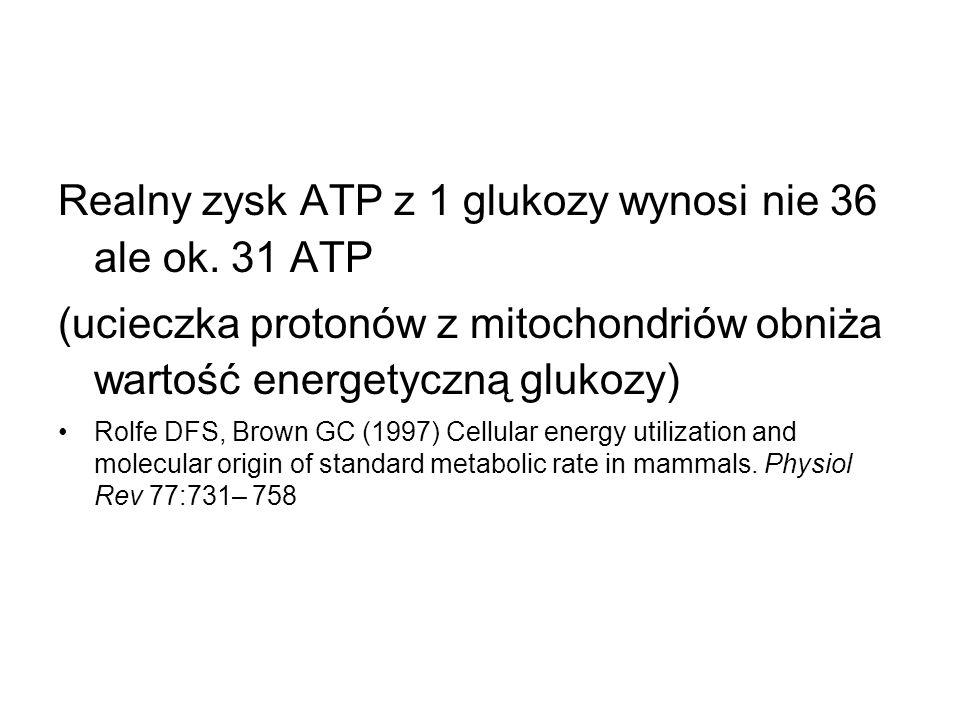 Realny zysk ATP z 1 glukozy wynosi nie 36 ale ok. 31 ATP (ucieczka protonów z mitochondriów obniża wartość energetyczną glukozy) Rolfe DFS, Brown GC (
