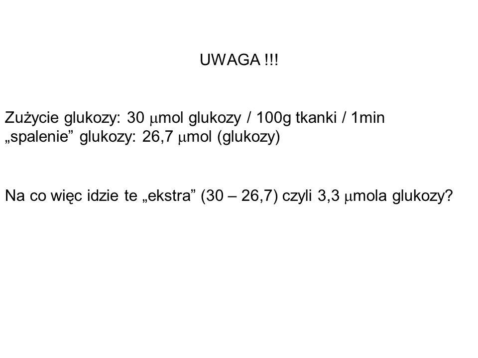 UWAGA !!! Zużycie glukozy: 30 mol glukozy / 100g tkanki / 1min spalenie glukozy: 26,7 mol (glukozy) Na co więc idzie te ekstra (30 – 26,7) czyli 3,3 m