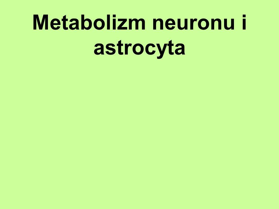 Metabolizm neuronu i astrocyta