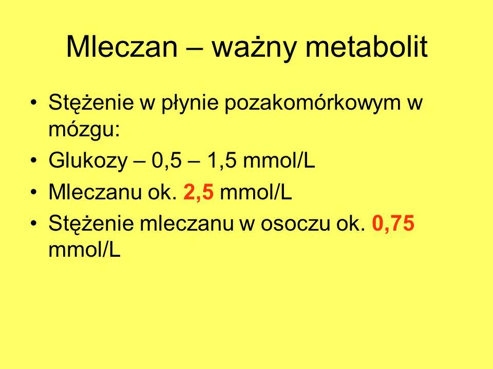 Mleczan – ważny metabolit Stężenie w płynie pozakomórkowym w mózgu: Glukozy – 0,5 – 1,5 mmol/L Mleczanu ok. 2,5 mmol/L Stężenie mleczanu w osoczu ok.