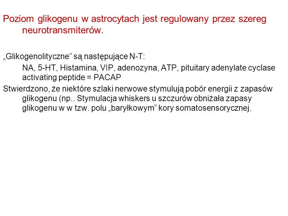 Poziom glikogenu w astrocytach jest regulowany przez szereg neurotransmiterów. Glikogenolityczne są następujące N-T: NA, 5-HT, Histamina, VIP, adenozy