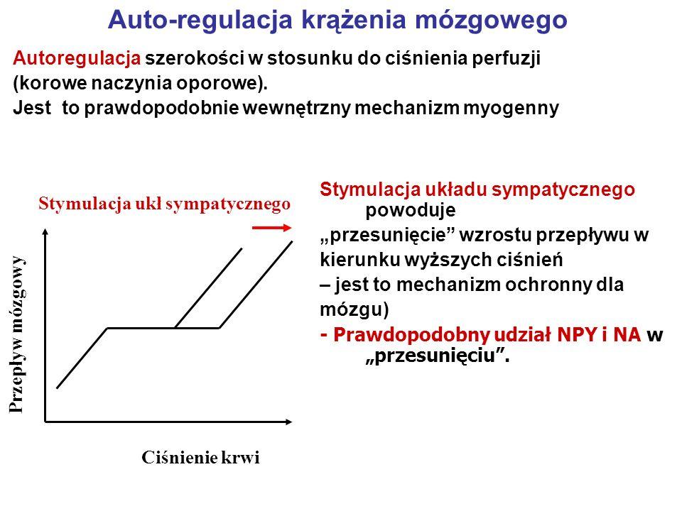 Auto-regulacja krążenia mózgowego Ciśnienie krwi Przepływ mózgowy Stymulacja ukł sympatycznego Stymulacja układu sympatycznego powoduje przesunięcie w