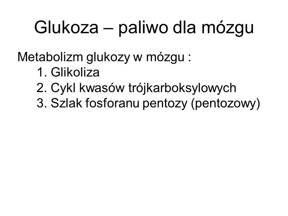 Glukoza – paliwo dla mózgu Metabolizm glukozy w mózgu : 1. Glikoliza 2. Cykl kwasów trójkarboksylowych 3. Szlak fosforanu pentozy (pentozowy)