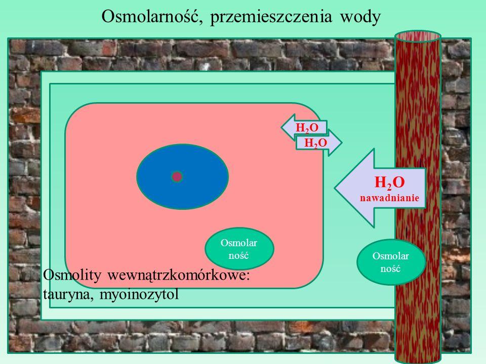 Osmolarność, przemieszczenia wody H2OH2O Osmolar ność H2OH2O Osmolity wewnątrzkomórkowe: tauryna, myoinozytol H 2 O nawadnianie