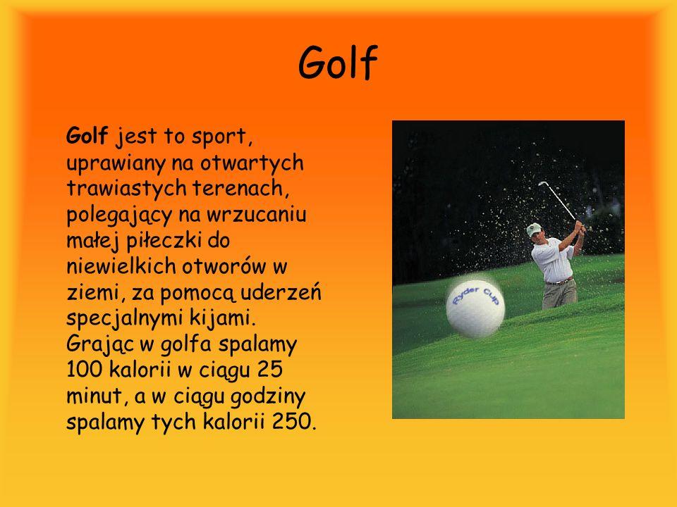 Golf Golf jest to sport, uprawiany na otwartych trawiastych terenach, polegający na wrzucaniu małej piłeczki do niewielkich otworów w ziemi, za pomocą