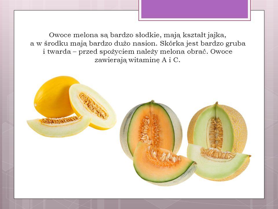 Owoce melona są bardzo słodkie, mają kształt jajka, a w środku mają bardzo dużo nasion.