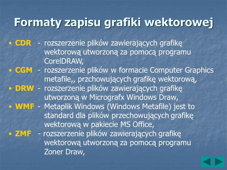 Formaty zapisu grafiki wektorowej CDR- rozszerzenie plików zawierających grafikę wektorową utworzoną za pomocą programu CorelDRAW, CGM- rozszerzenie p