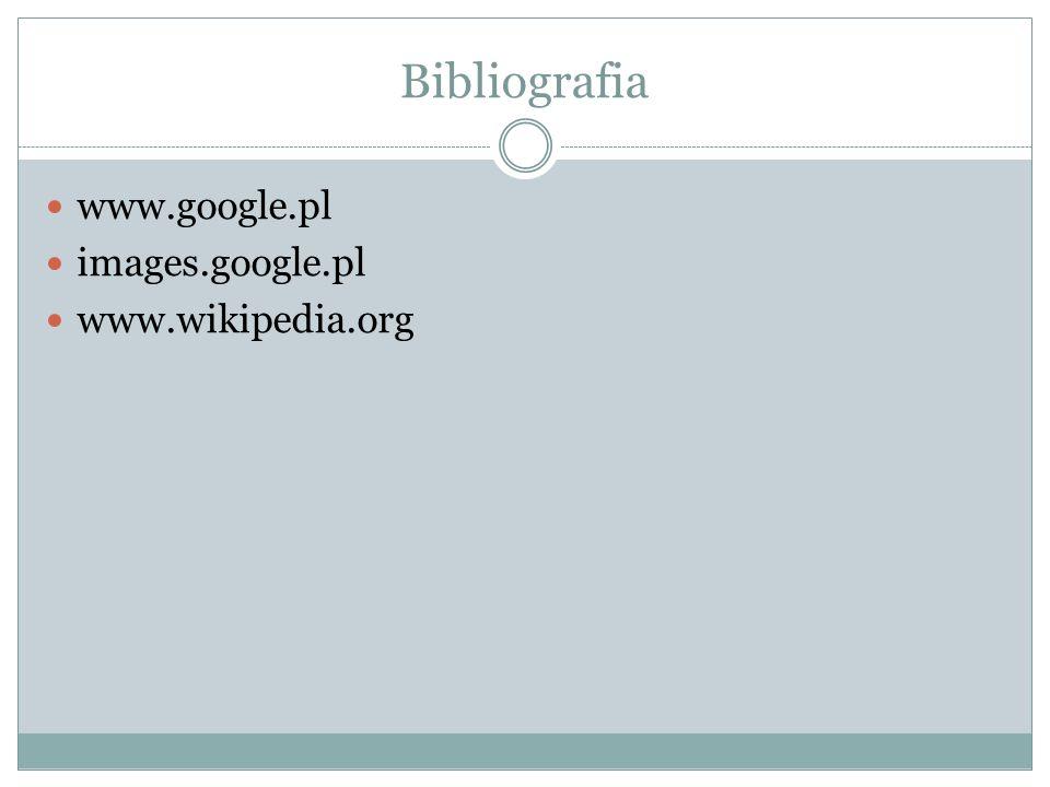Bibliografia www.google.pl images.google.pl www.wikipedia.org