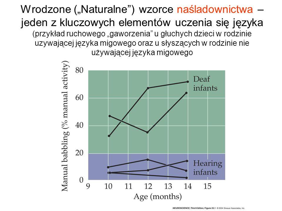 Wrodzone (Naturalne) wzorce naśladownictwa – jeden z kluczowych elementów uczenia się języka (przykład ruchowego gaworzenia u głuchych dzieci w rodzin