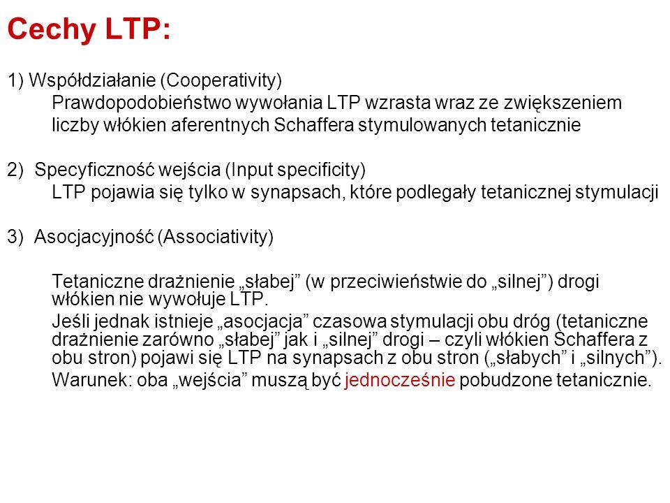 Cechy LTP: 1) Współdziałanie (Cooperativity) Prawdopodobieństwo wywołania LTP wzrasta wraz ze zwiększeniem liczby włókien aferentnych Schaffera stymul