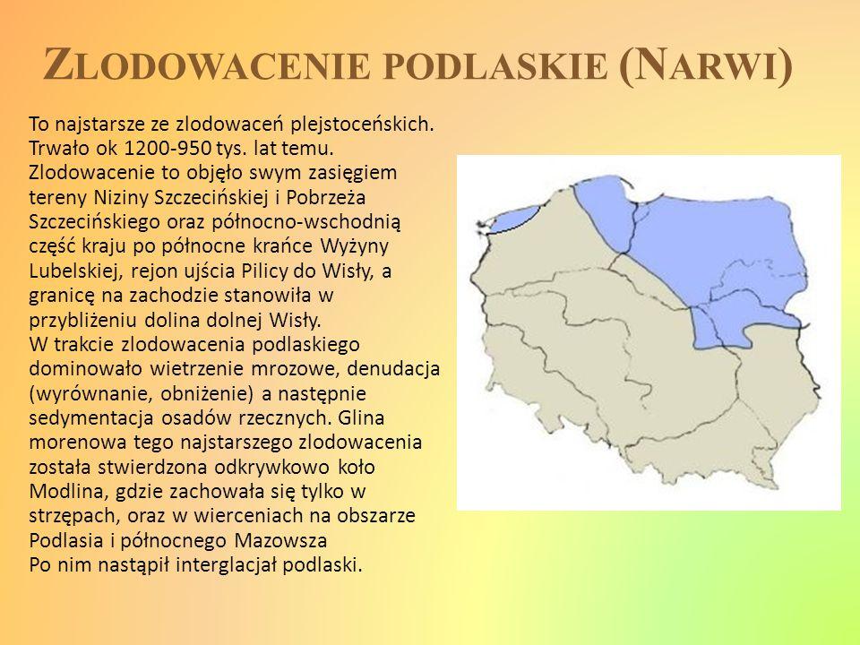 Z LODOWACENIE PODLASKIE (N ARWI ) To najstarsze ze zlodowaceń plejstoceńskich. Trwało ok 1200-950 tys. lat temu. Zlodowacenie to objęło swym zasięgiem