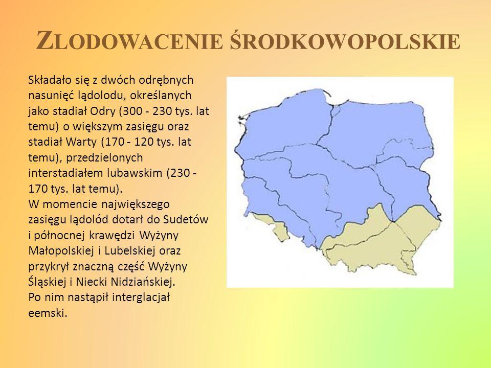 Z LODOWACENIE ŚRODKOWOPOLSKIE Składało się z dwóch odrębnych nasunięć lądolodu, określanych jako stadiał Odry (300 - 230 tys. lat temu) o większym zas