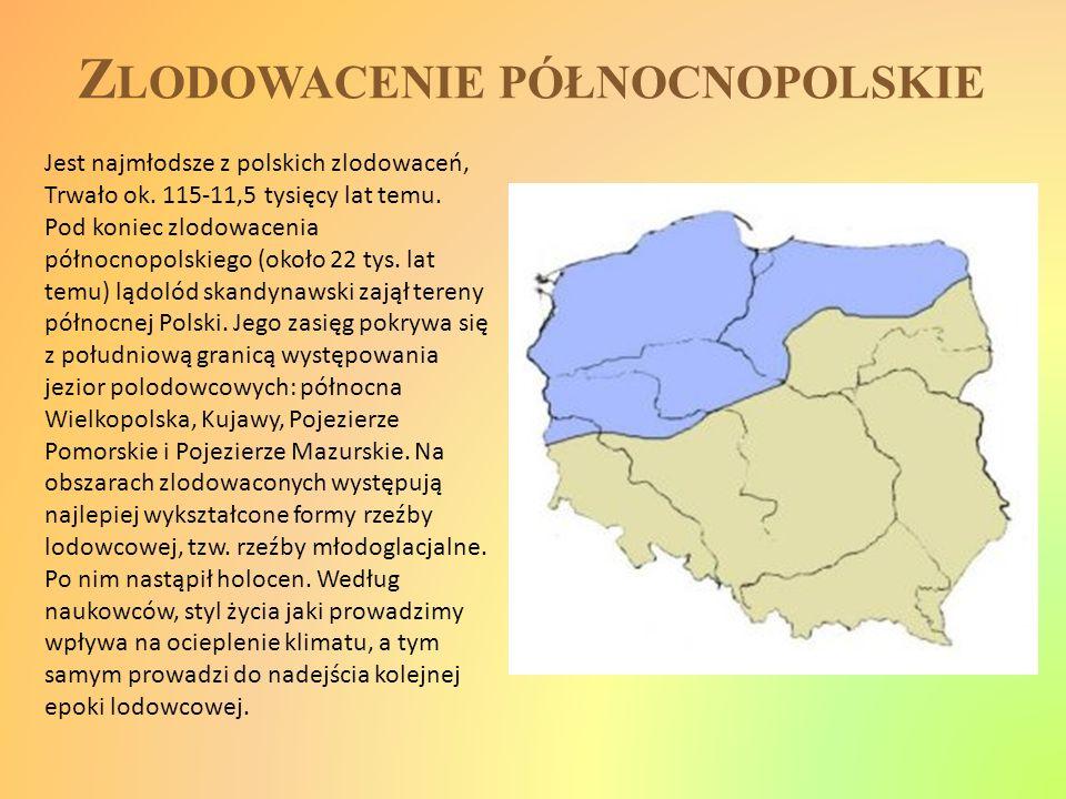 Z LODOWACENIE PÓŁNOCNOPOLSKIE Jest najmłodsze z polskich zlodowaceń, Trwało ok. 115-11,5 tysięcy lat temu. Pod koniec zlodowacenia północnopolskiego (