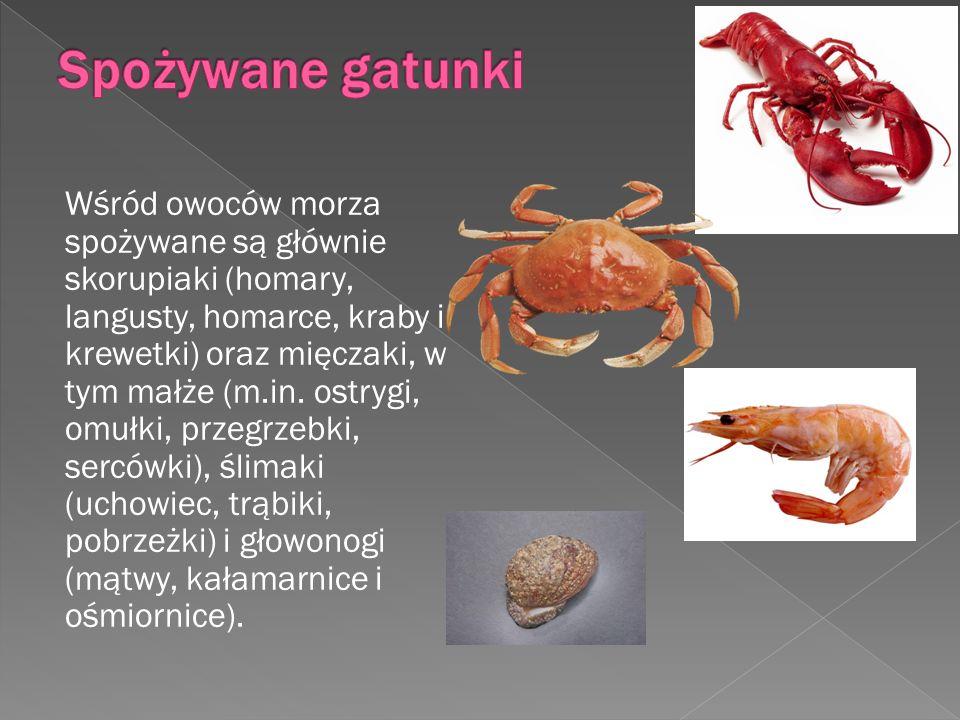 Wśród owoców morza spożywane są głównie skorupiaki (homary, langusty, homarce, kraby i krewetki) oraz mięczaki, w tym małże (m.in. ostrygi, omułki, pr