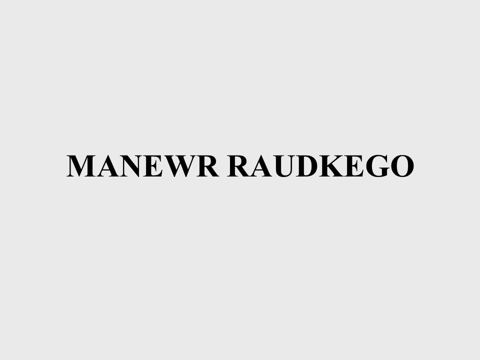 MANEWR RAUDKEGO
