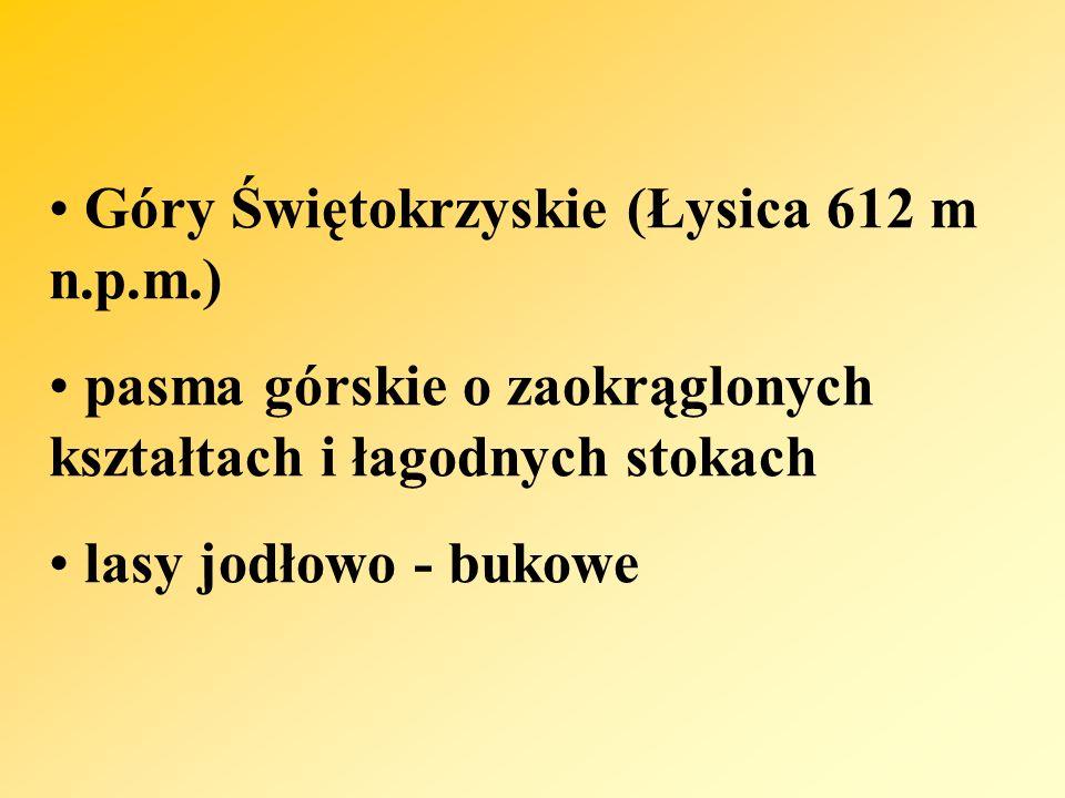 Góry Świętokrzyskie (Łysica 612 m n.p.m.) pasma górskie o zaokrąglonych kształtach i łagodnych stokach lasy jodłowo - bukowe