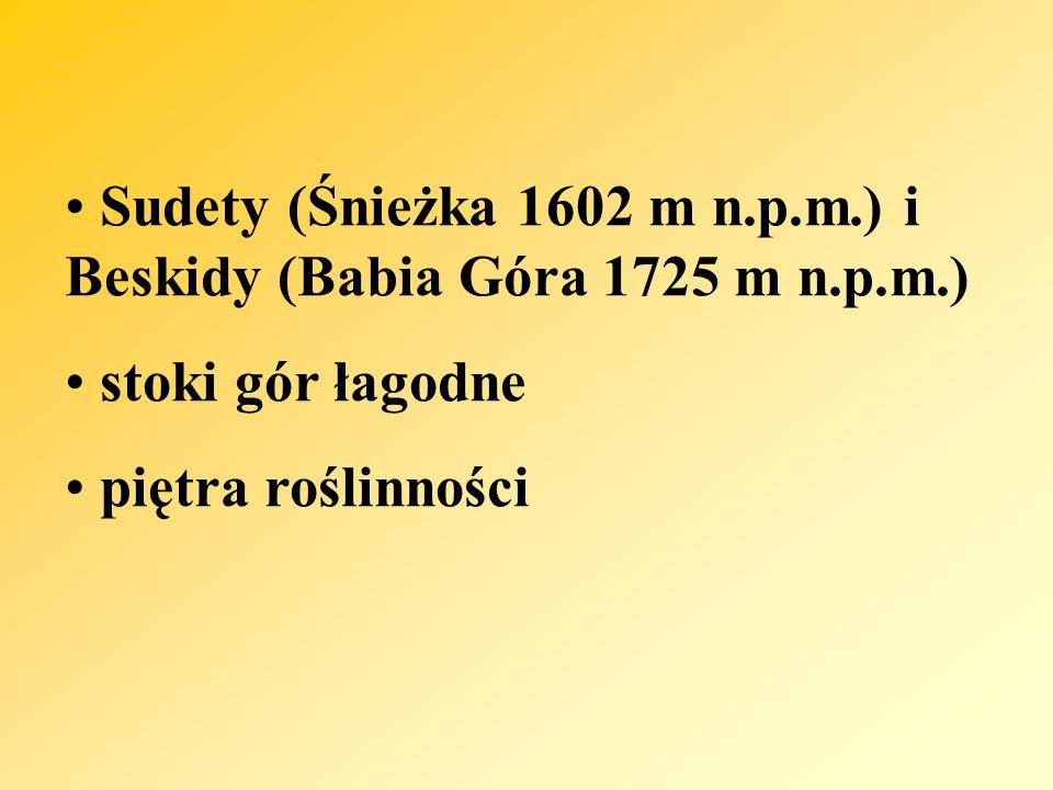 Sudety (Śnieżka 1602 m n.p.m.) i Beskidy (Babia Góra 1725 m n.p.m.) stoki gór łagodne piętra roślinności
