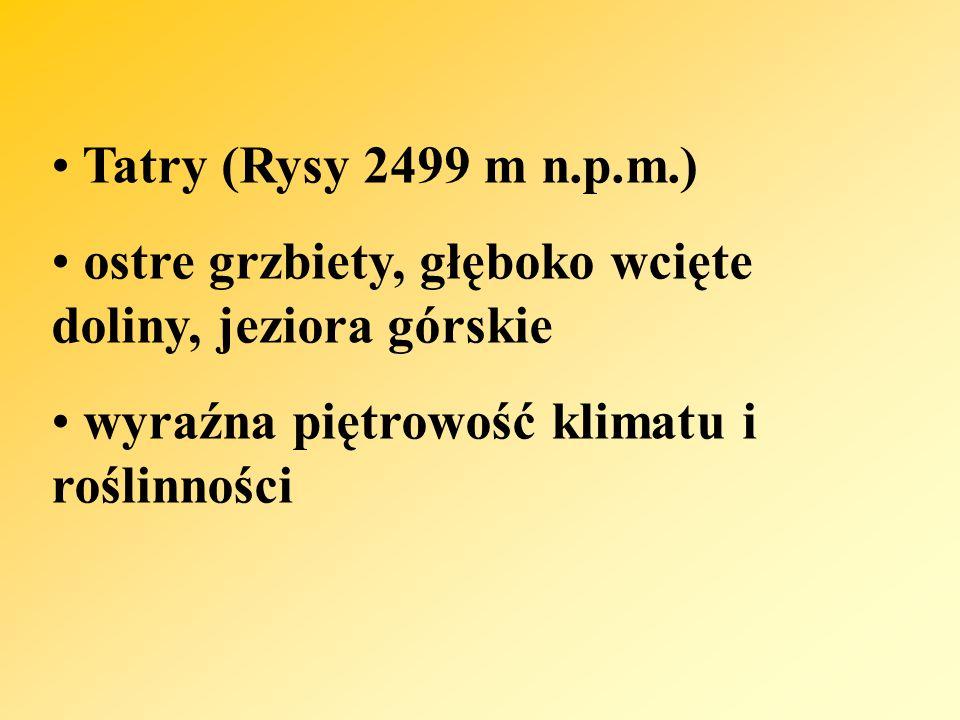 Tatry (Rysy 2499 m n.p.m.) ostre grzbiety, głęboko wcięte doliny, jeziora górskie wyraźna piętrowość klimatu i roślinności