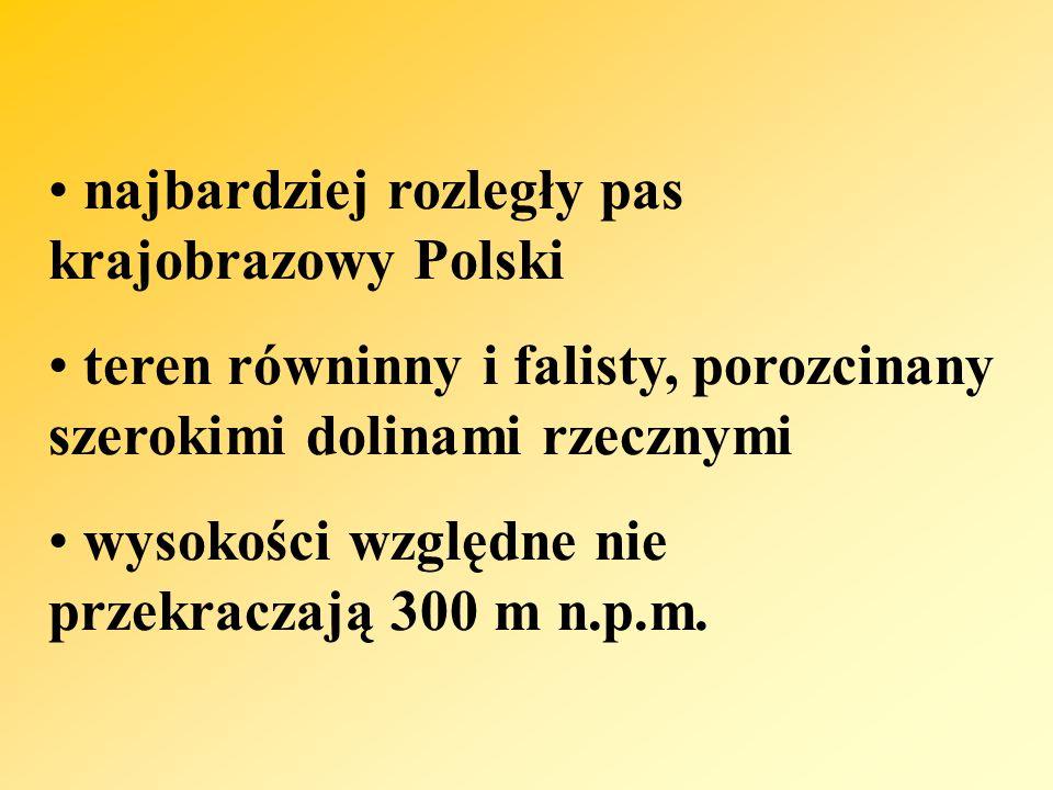 najbardziej rozległy pas krajobrazowy Polski teren równinny i falisty, porozcinany szerokimi dolinami rzecznymi wysokości względne nie przekraczają 300 m n.p.m.