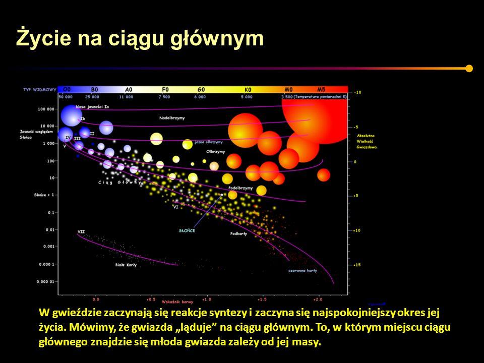 Życie na ciągu głównym W gwieździe zaczynają się reakcje syntezy i zaczyna się najspokojniejszy okres jej życia. Mówimy, że gwiazda ląduje na ciągu gł