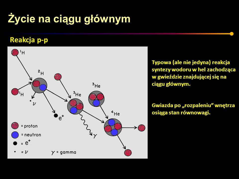 Życie na ciągu głównym Typowa (ale nie jedyna) reakcja syntezy wodoru w hel zachodząca w gwieździe znajdującej się na ciągu głównym. Gwiazda po rozpal