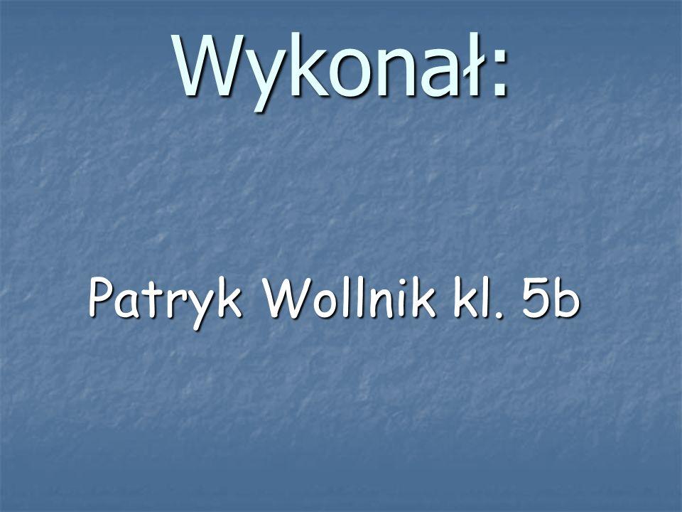 Wykonał: Patryk Wollnik kl. 5b Patryk Wollnik kl. 5b