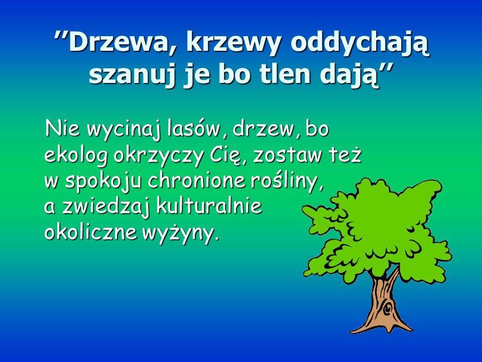 Drzewa, krzewy oddychają szanuj je bo tlen dają Nie wycinaj lasów, drzew, bo ekolog okrzyczy Cię, zostaw też w spokoju chronione rośliny, a zwiedzaj k