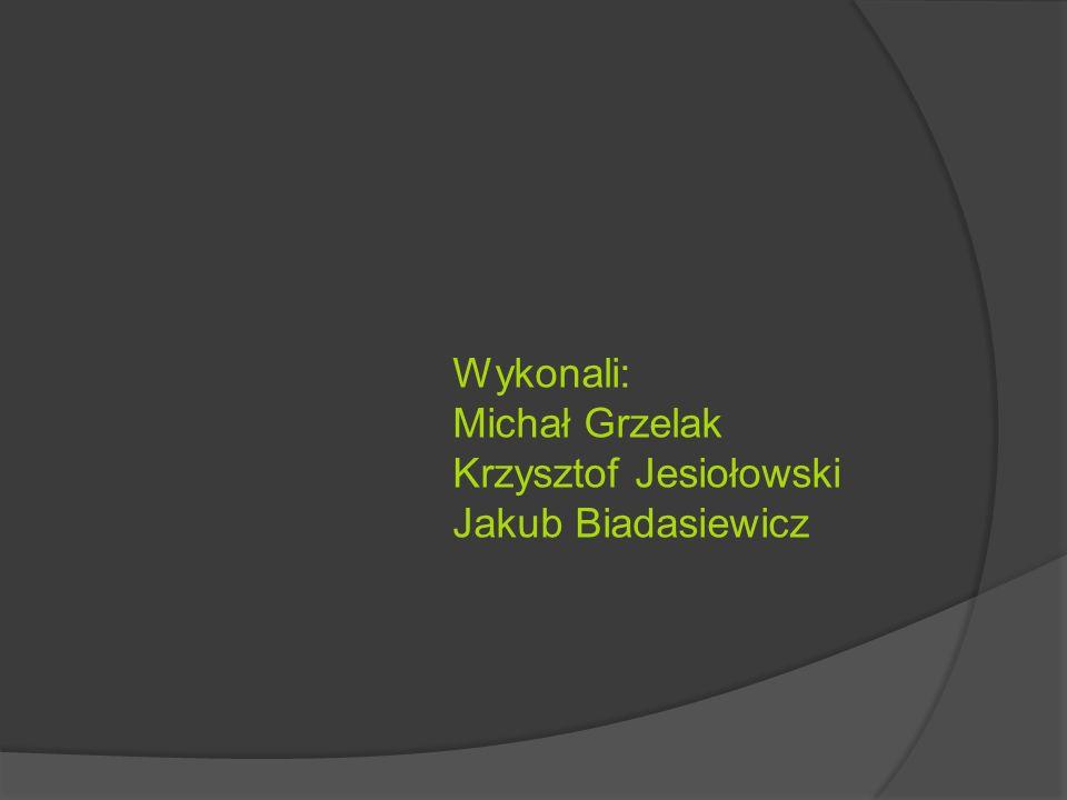 Wykonali: Michał Grzelak Krzysztof Jesiołowski Jakub Biadasiewicz