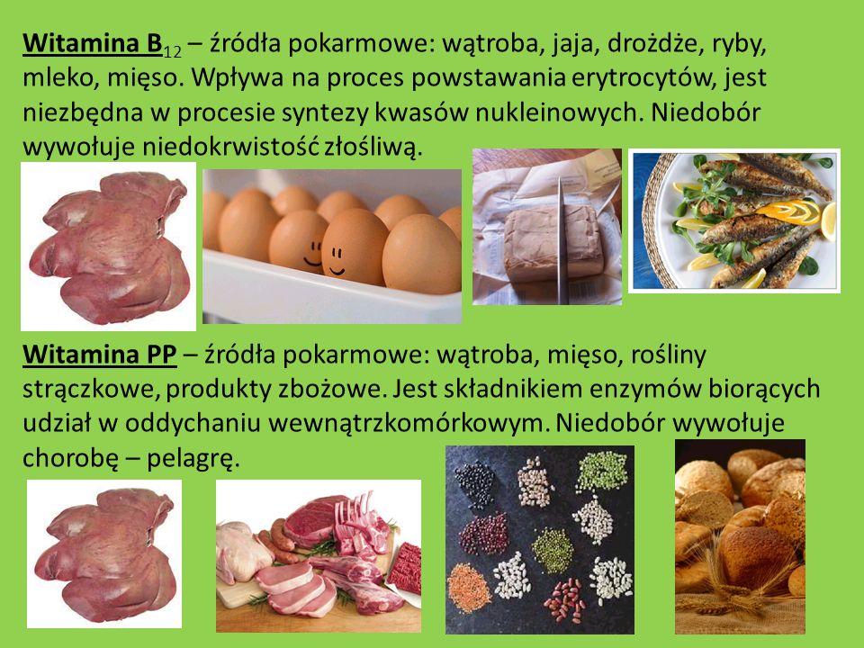 Witamina B 12 – źródła pokarmowe: wątroba, jaja, drożdże, ryby, mleko, mięso. Wpływa na proces powstawania erytrocytów, jest niezbędna w procesie synt