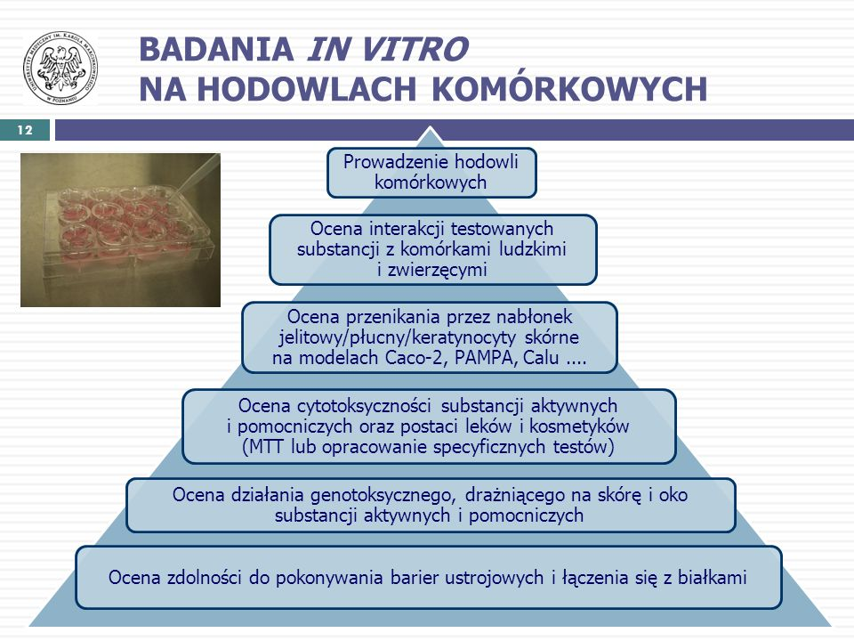 12 Prowadzenie hodowli komórkowych Ocena interakcji testowanych substancji z komórkami ludzkimi i zwierzęcymi Ocena przenikania przez nabłonek jelitow