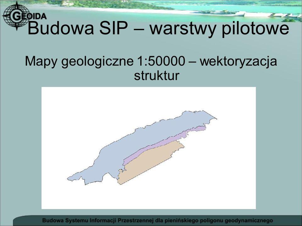 Budowa SIP – baza danych - podkład mapowy - status punktów pomiarowych (niwelacja precyzyjna, niwelacja trygonometryczna, pomiary GPS, grawimetria) - przynależność punktów do struktury geologicznej - surowe dane pomiarowe i dzienniki - opisy topograficzne - zdjęcia punktów