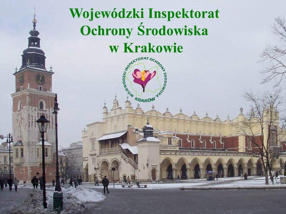 POZYCJA MAŁOPOLSKI NA TLE INNYCH WOJEWÓDZTW Wyszczególnienie Polska Województwa Lokata woj.