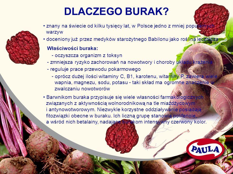 DLACZEGO BURAK? znany na świecie od kilku tysięcy lat, w Polsce jedno z mniej popularnych warzyw doceniony już przez medyków starożytnego Babilonu jak
