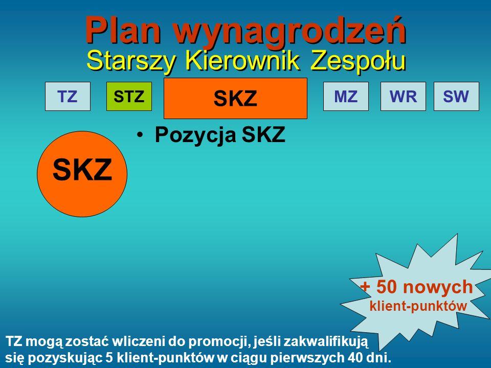 SKZ TZMZWRSWSTZ Plan wynagrodzeń Starszy Kierownik Zespołu Pozycja SKZ SKZ TZ mogą zostać wliczeni do promocji, jeśli zakwalifikują się pozyskując 5 k