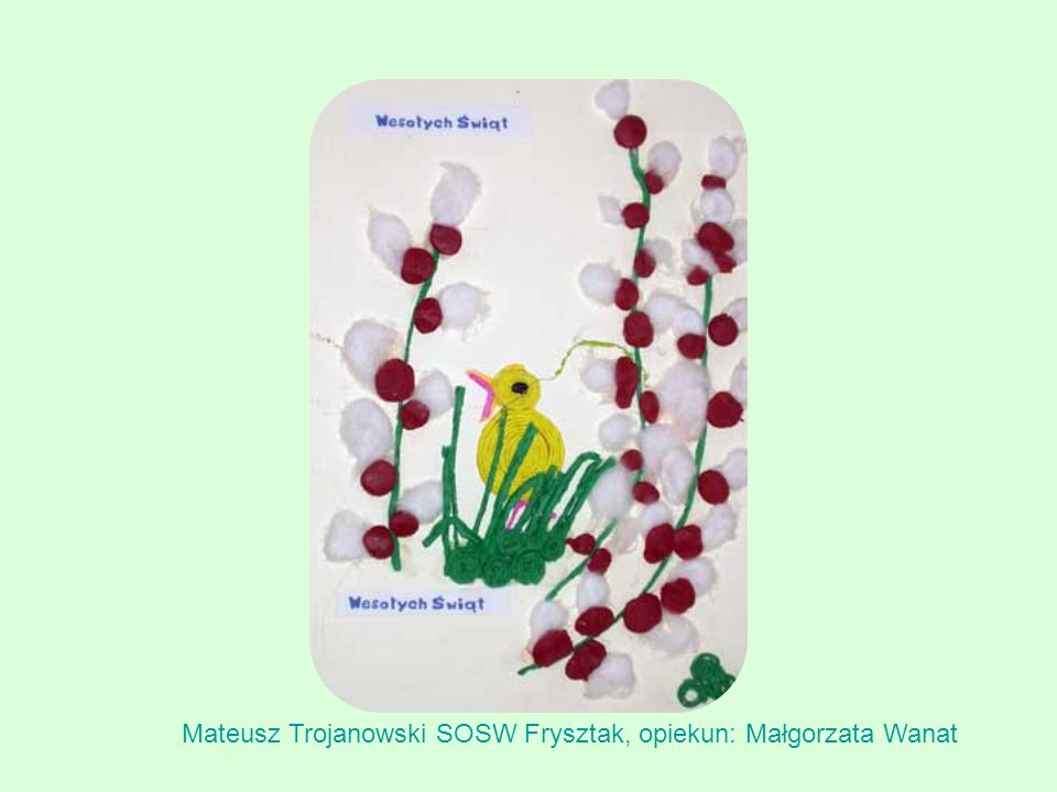 Mateusz Trojanowski SOSW Frysztak, opiekun: Małgorzata Wanat
