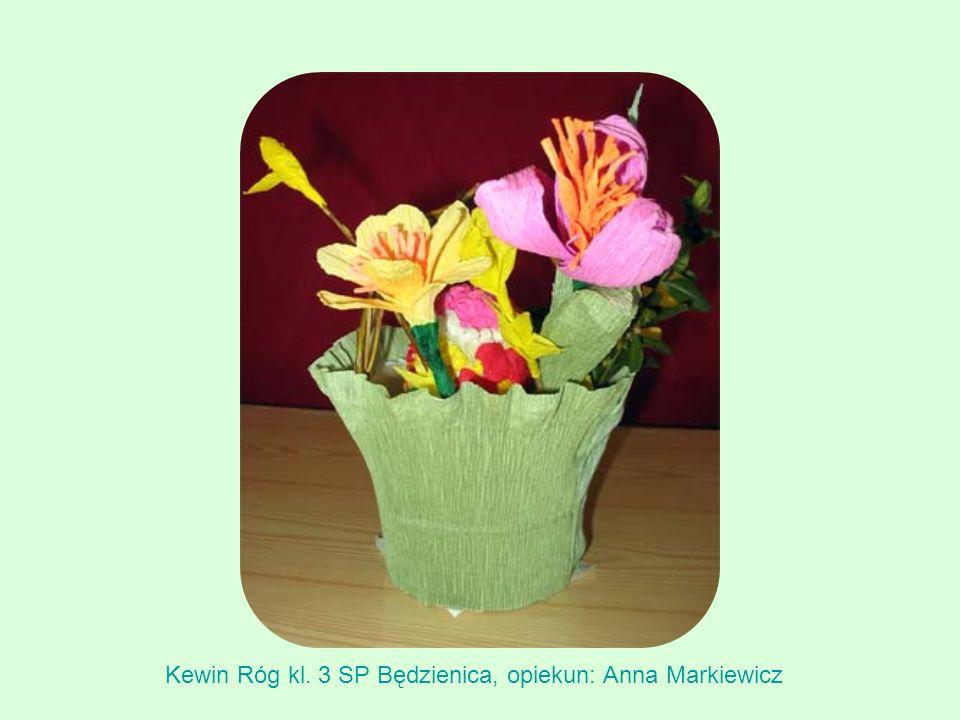 Kewin Róg kl. 3 SP Będzienica, opiekun: Anna Markiewicz