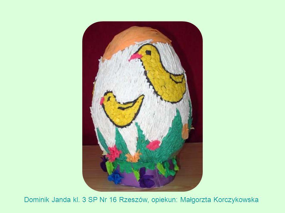 Dominik Janda kl. 3 SP Nr 16 Rzeszów, opiekun: Małgorzta Korczykowska