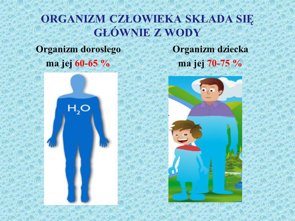 ORGANIZM CZŁOWIEKA SKŁADA SIĘ GŁÓWNIE Z WODY Organizm dziecka ma jej 70-75 % Organizm dorosłego ma jej 60-65 %