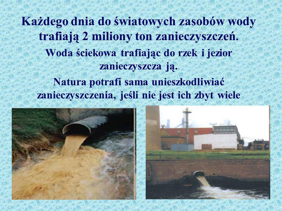 Każdego dnia do światowych zasobów wody trafiają 2 miliony ton zanieczyszczeń.