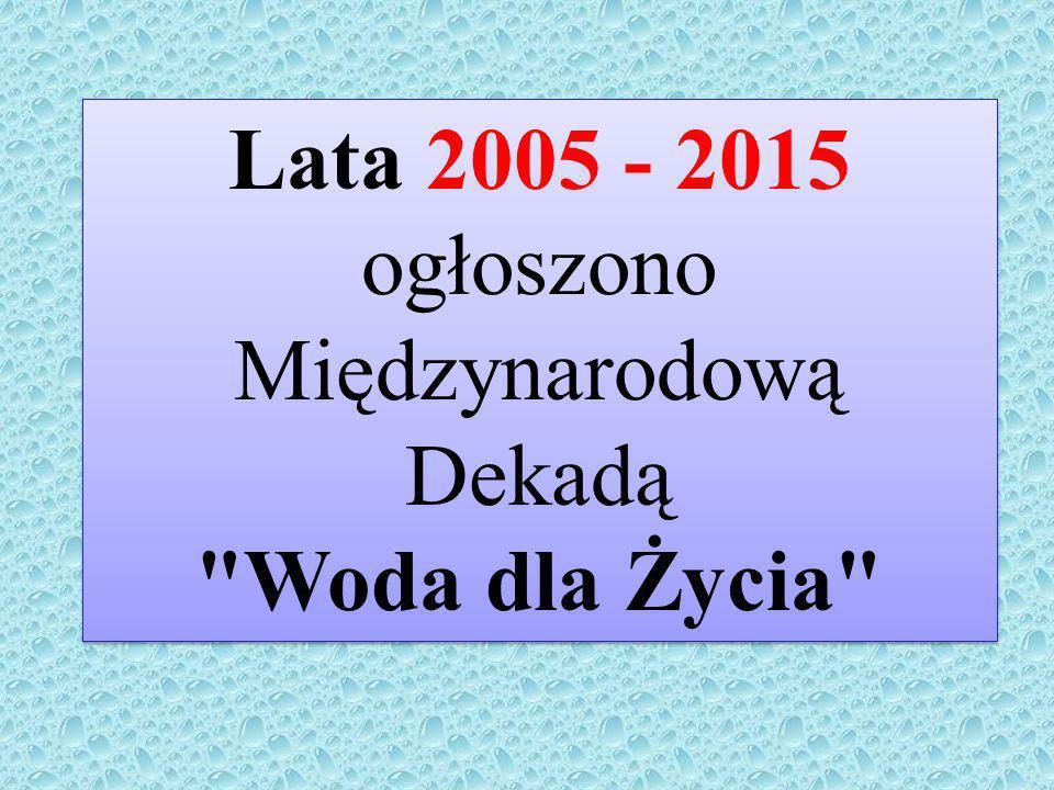 Lata 2005 - 2015 ogłoszono Międzynarodową Dekadą Woda dla Życia Lata 2005 - 2015 ogłoszono Międzynarodową Dekadą Woda dla Życia