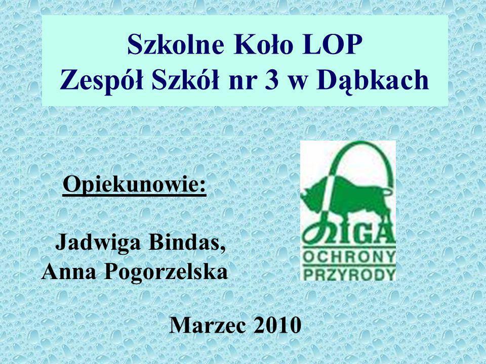 Szkolne Koło LOP Zespół Szkół nr 3 w Dąbkach Marzec 2010 Opiekunowie: Jadwiga Bindas, Anna Pogorzelska