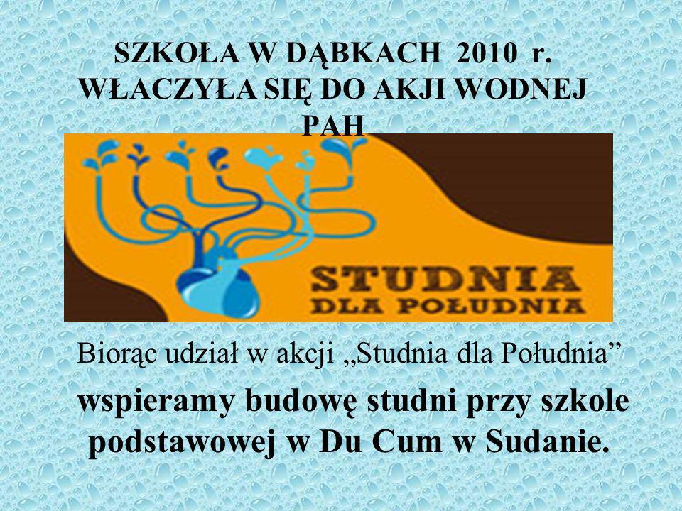 SZKOŁA W DĄBKACH 2010 r.