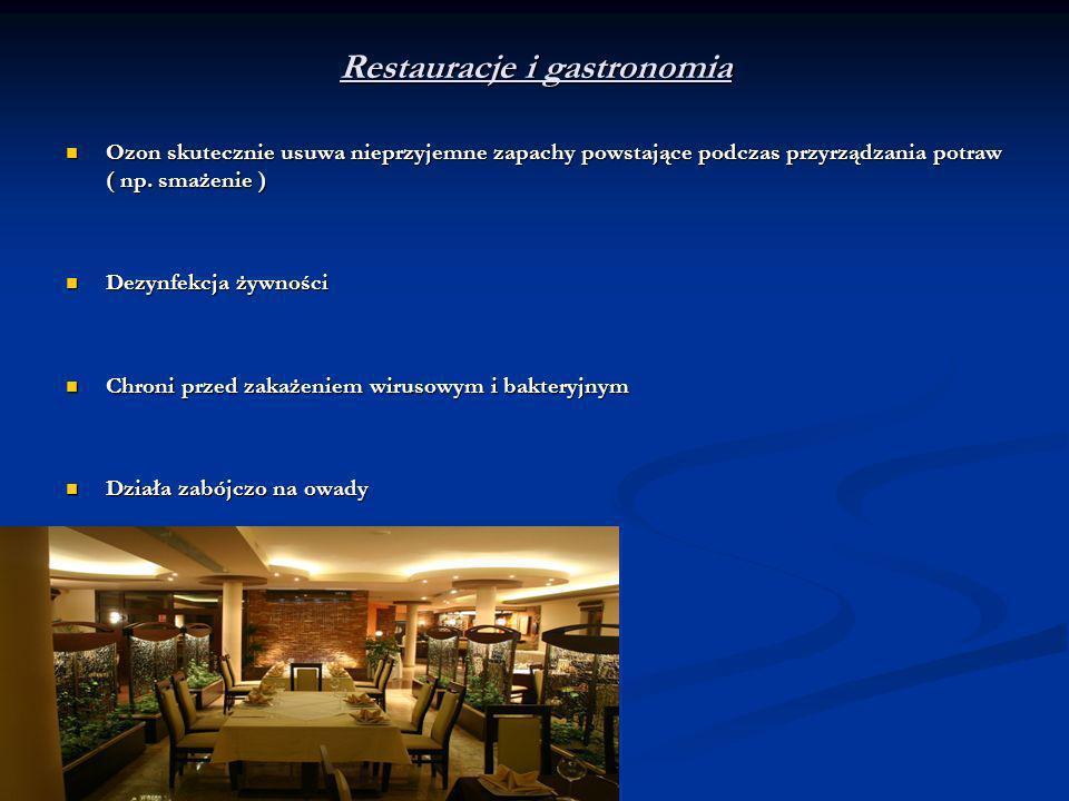 Restauracje i gastronomia Ozon skutecznie usuwa nieprzyjemne zapachy powstające podczas przyrządzania potraw ( np. smażenie ) Ozon skutecznie usuwa ni