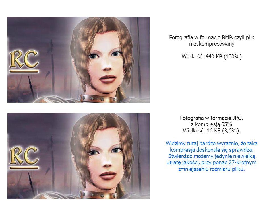 Fotografia w formacie BMP, czyli plik nieskompresowany Wielkość: 440 KB (100%) Fotografia w formacie JPG, z kompresją 20% Wielkość: 8 KB (1,8%).