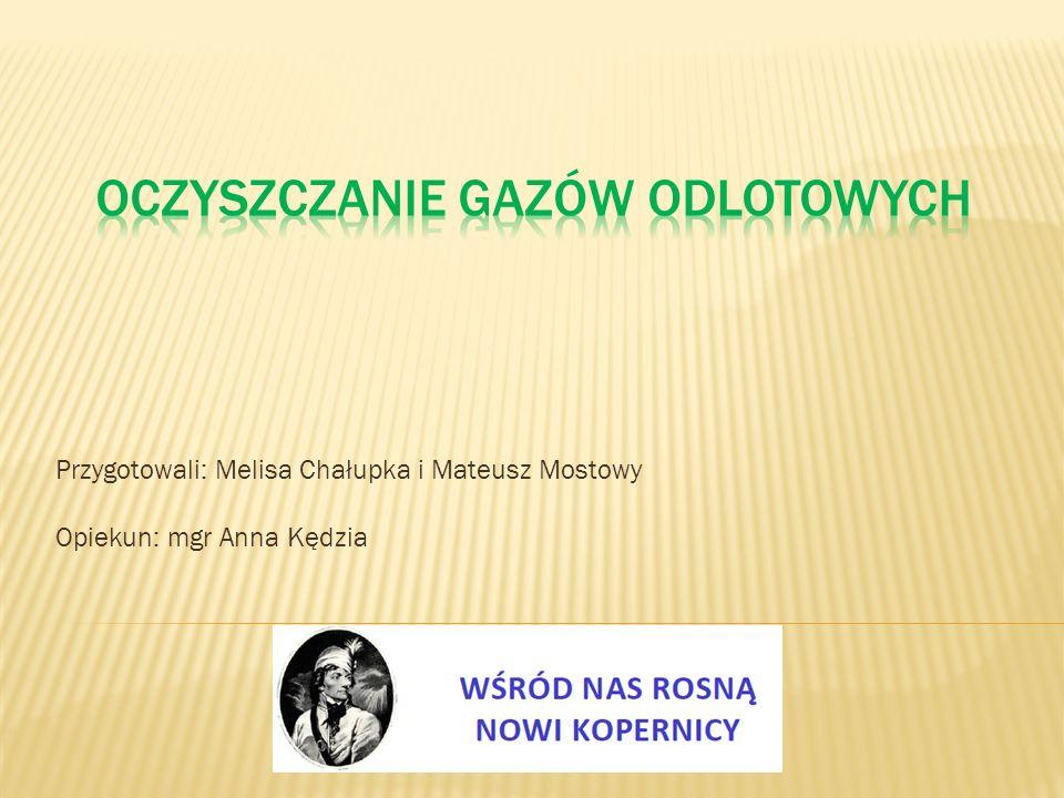 Przygotowali: Melisa Chałupka i Mateusz Mostowy Opiekun: mgr Anna Kędzia