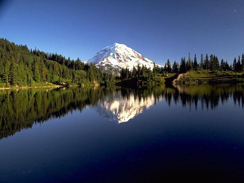 M M ount Rainer Mount Rainier (4392 m n.p.m.), czynny wulkan w Kordylierach, położony w USA, w stanie Waszyngton, na południe od Seattle, stanowiący n