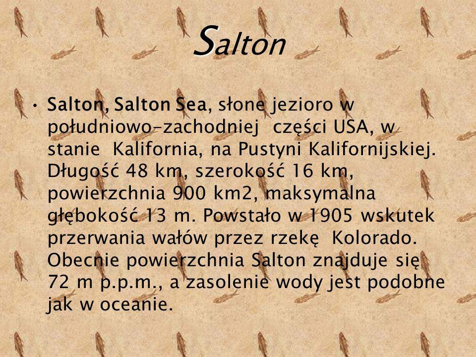 S S alton Salton, Salton Sea, słone jezioro w południowo-zachodniej części USA, w stanie Kalifornia, na Pustyni Kalifornijskiej.