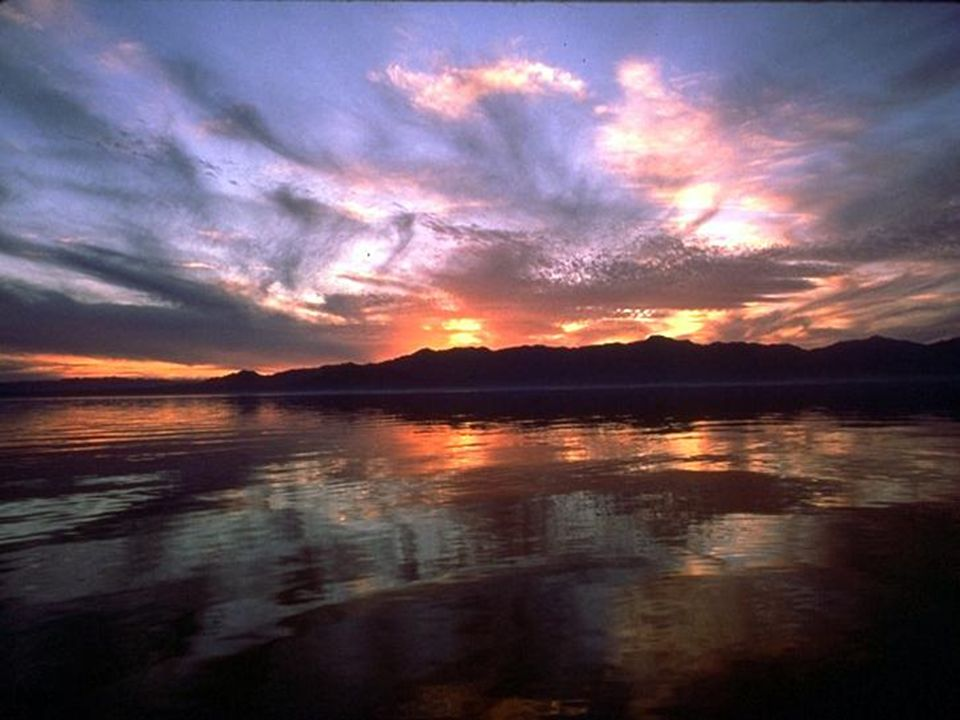 S S alton Salton, Salton Sea, słone jezioro w południowo-zachodniej części USA, w stanie Kalifornia, na Pustyni Kalifornijskiej. Długość 48 km, szerok
